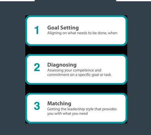 sl-self-leadership-skills-diagram