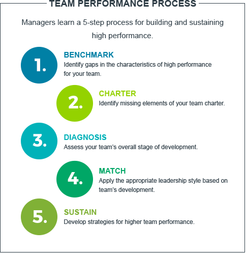 st-team-performance-process-team-leadership-model