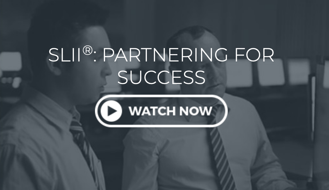 SLII Partnering For Success